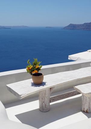 Santorini-caldera-little-orange-tree-The
