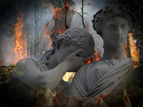 The Greek Wildfires - How You Can Help