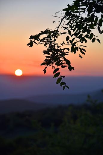 Arcadia-Greece-sunset.JPG