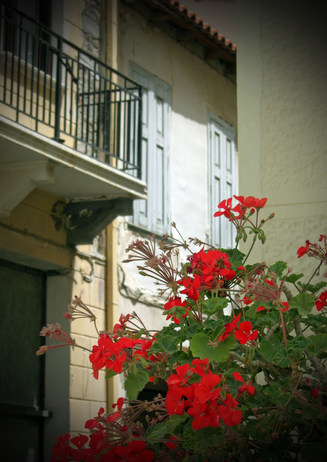 Geraniums and balcony