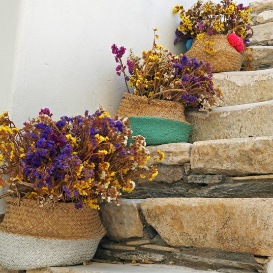 Steps and flowerpots, Chora