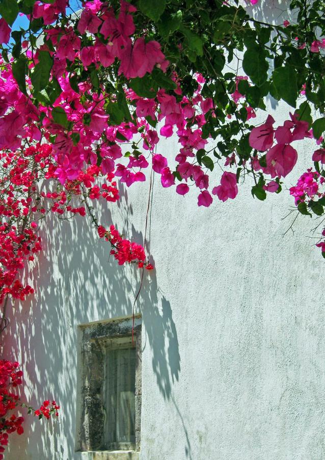 Santorini-monastery-bougaivillea-The-Gre