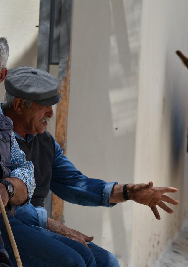 Santorini-mules-and-driver-The-Greekish-