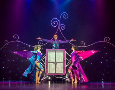 Best Magic Show Tampa Bay