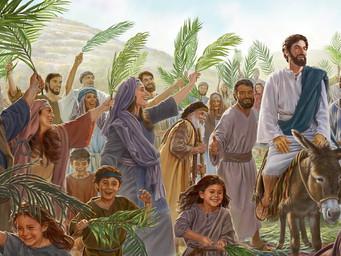 Domingo de Ramos: da Galiléia para Jerusalém