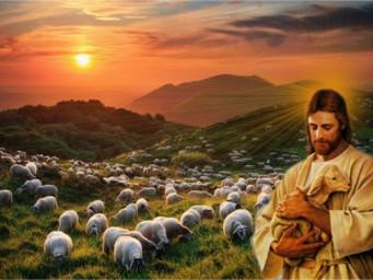 Jesus, o Bom Pastor! 4º Domingo da Páscoa