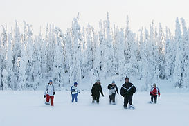 Snowshoe walking group.jpg