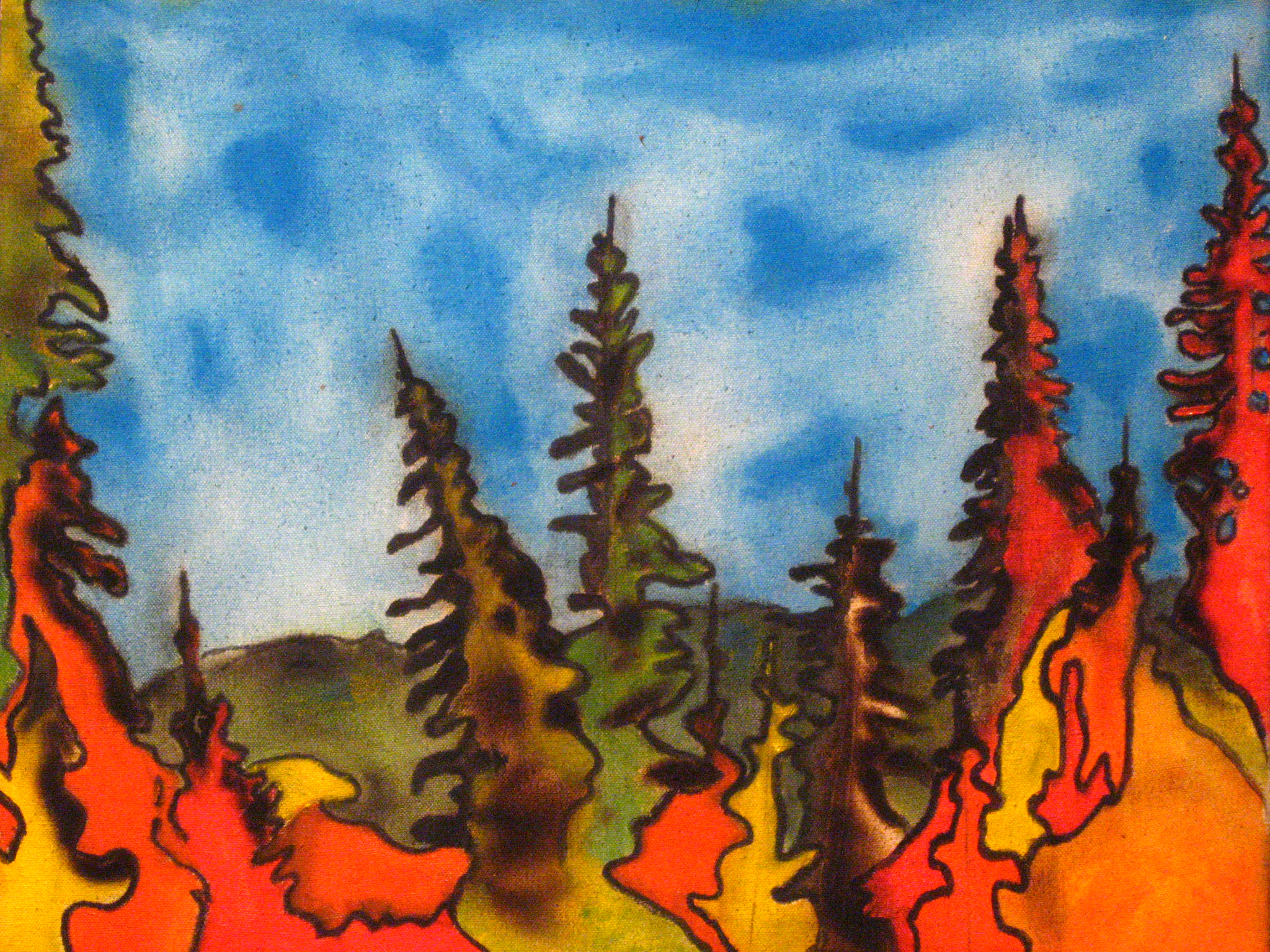 Algonquin Glowing Pines.jpg