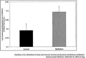 Antikörper bauen sich bei Grippe schneller auf bei Meditierenden