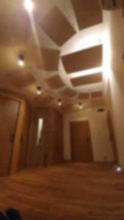 Piano Room ceiling.JPG