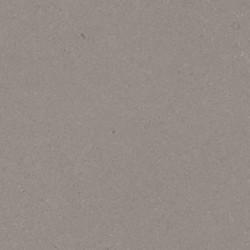 Fossil-Gray-Matte-quartz