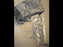 Paper Bag Study