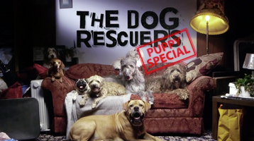 The Dog Rescuers: puppy special, Middlechild Productions, C5