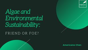Algae and Environmental Sustainability: Friend or Foe?