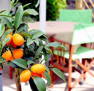 im Restaurant Mediterran Kaiserslautern