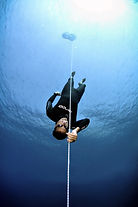 wave 2, Freediving_Training_Philippines,