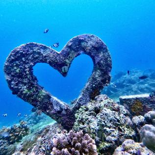 ocean bluex,ocean bx,fdhq, freediving,freedive,bx.jpg