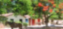 centro de cumuruxatiba tem flamboyant