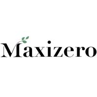 Maxizero Inc.png