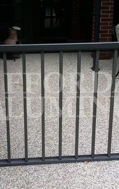Pool Fence 3a