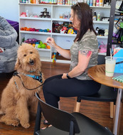 Charlie is smiling because he gets treats at  Sandys Grooming Tails & K9 Cafe