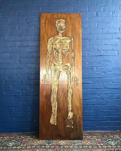 Anatomical Man Scratch Work Art Piece