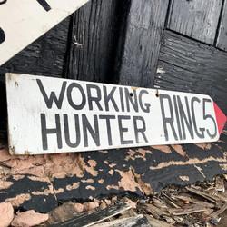 Working Hunter