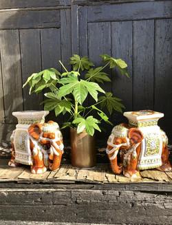 Pair of Eastern Glazed Ceramic Stools_St
