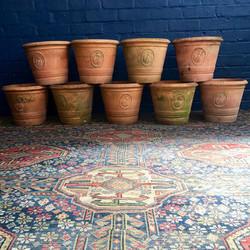Ladybird Terracotta Plant Pots