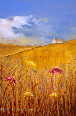 'Golden Fields'