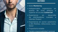 GERENTE DE VENTAS MAYOREO