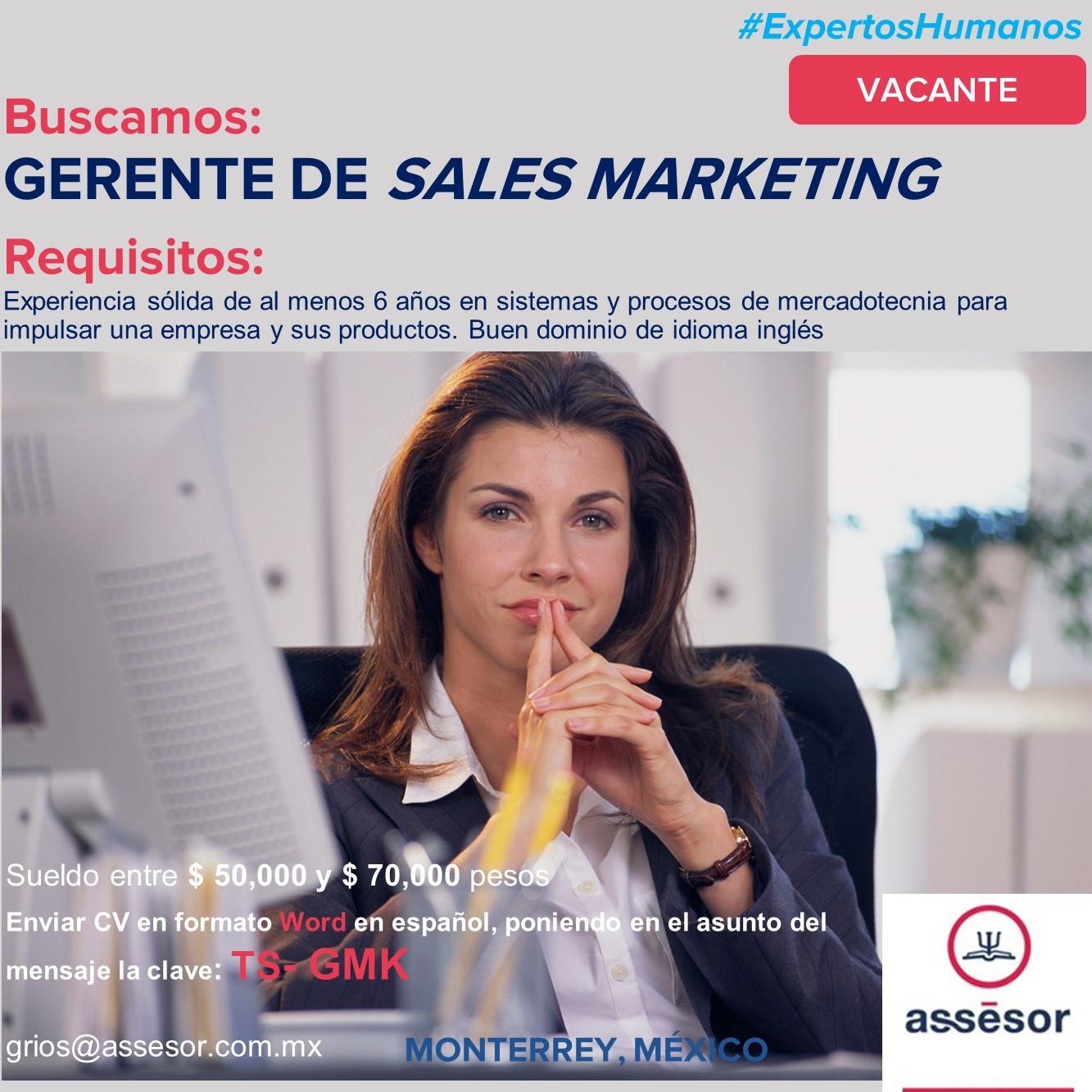 Gerente de Sales Marketing Ver  1.0.jpg