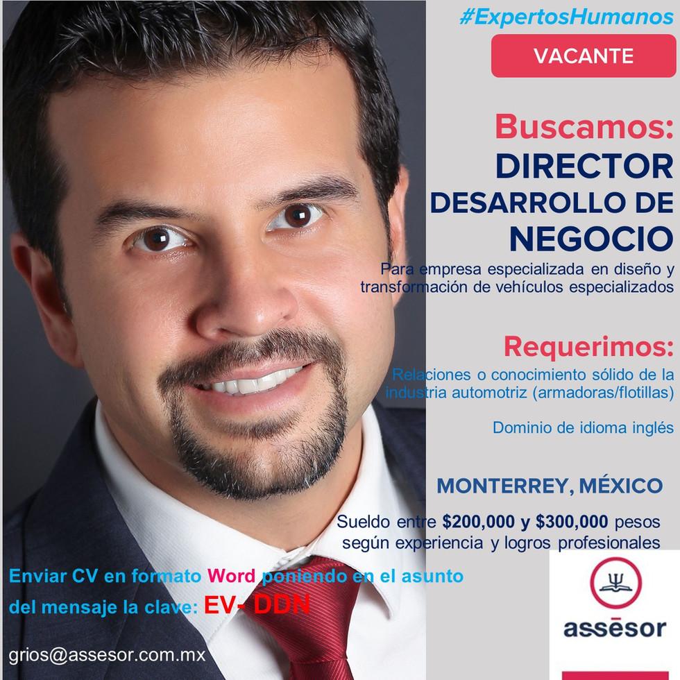 Director de Desarrollo de Negocio Ver 1.