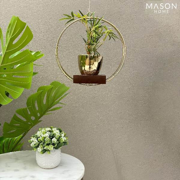 Gold Hanging Planter: Insurance For An Extra Bit of Elegance And Charm