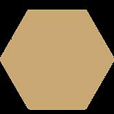 Logo-Fläche-gold