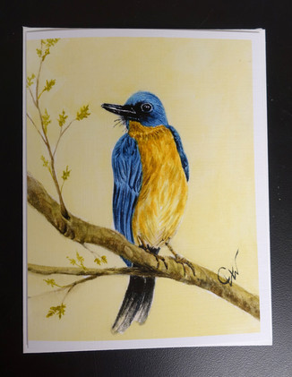"""Birds"" Note Cards_3"
