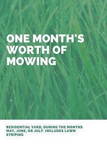 Green and White Grass Lawn Care Flyer (1