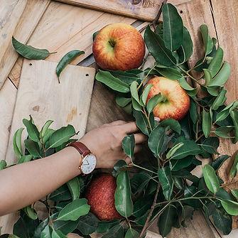 Les pommes biologiques