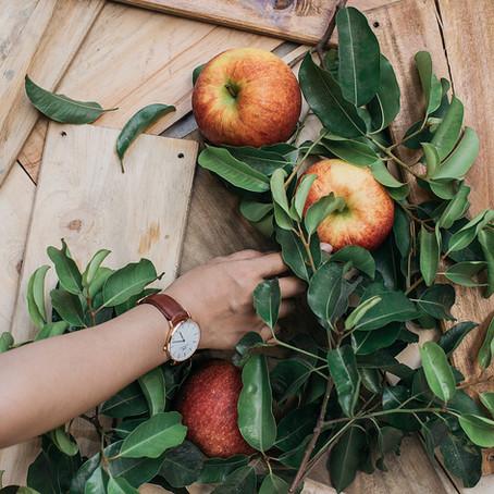 Apfelessig – ein Fatburner?