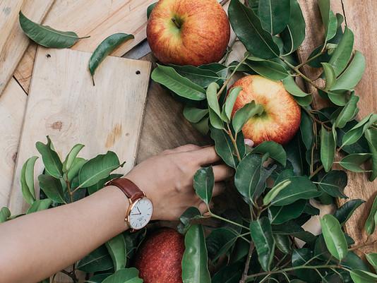 Raw Apple Salad for Better Gut Health
