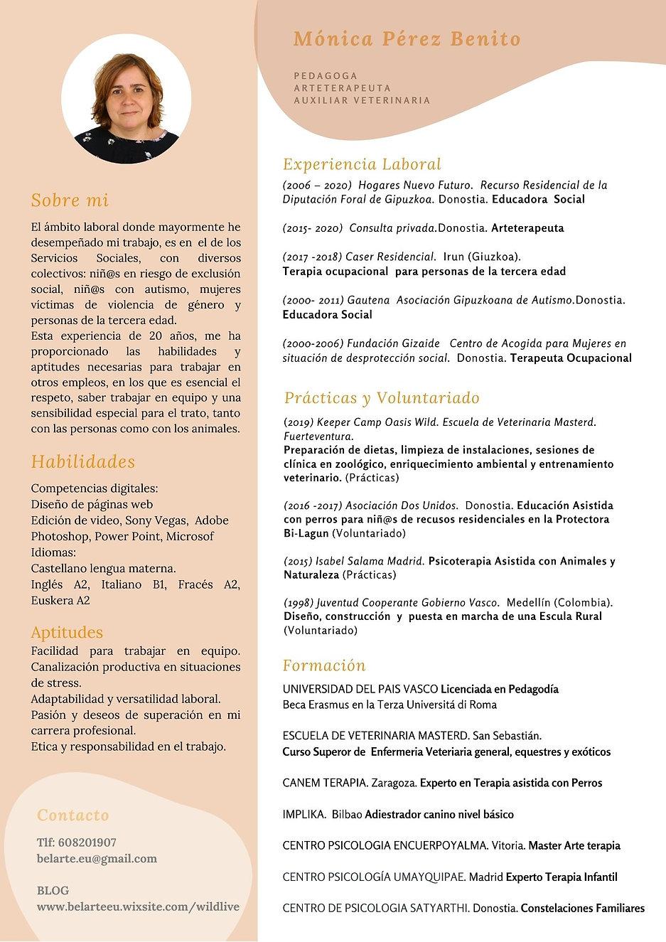 Currículum 2020.jpg
