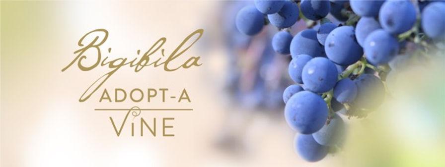 Adopt-a Vine Banner (1).jpeg