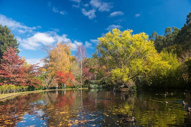 Malmsbury Botanical Garden, Macedon, Vic