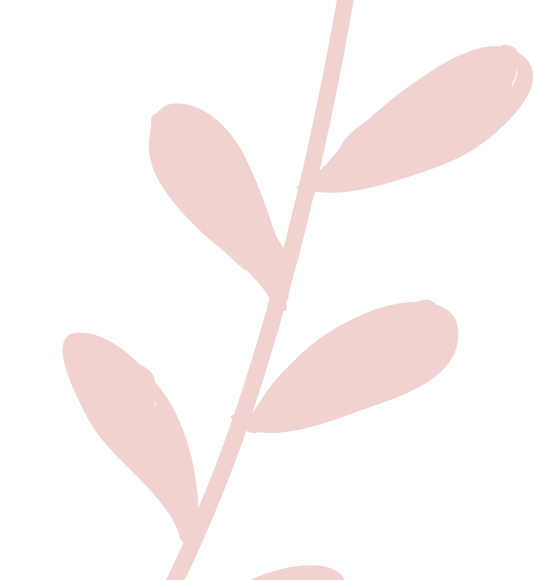 CreativeSeedCo_Element_Pink_4.png