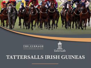 Irish 2,000 Guineas Preview