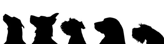 vector-silhouette-dog-on-white-260nw-197
