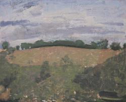 Field, 2014