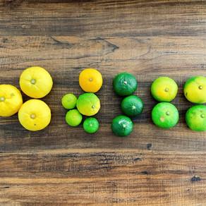 食べ比べベストシーズン!今年の香酸柑橘食べ比べてみた