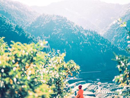 柑橘と共に、山で生きる。