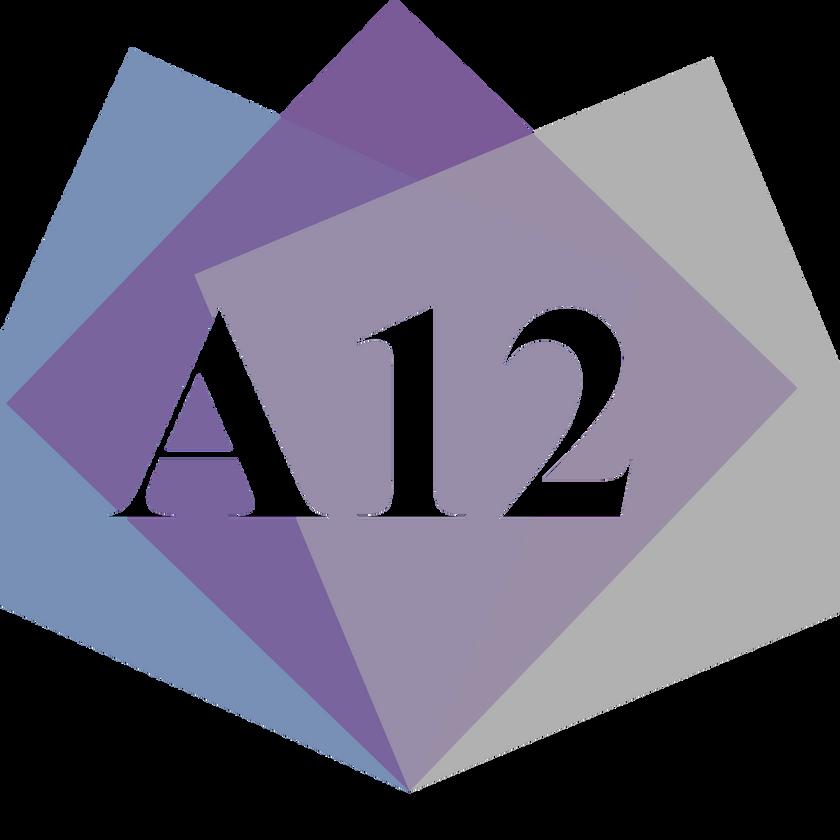 Agile Team Blueprint - 12 Weeks - 1 Team - Fixed Price